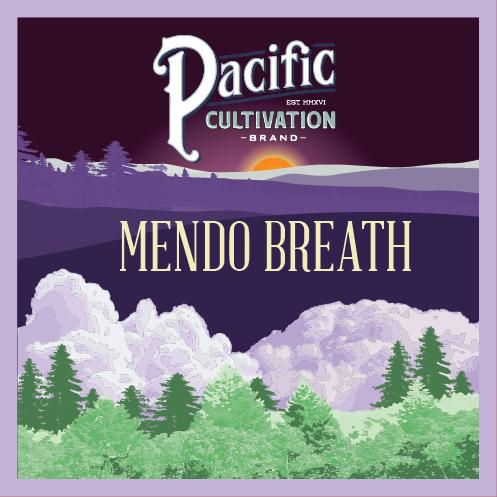 Mendo Breath and original Cannabis strain from Mendocino County