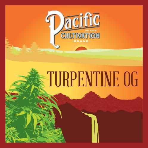 Turpentine OG